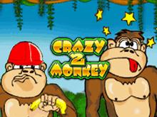 Игровые аппараты Crazy Monkey 2