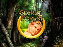 В клубе Вулкан Secret Forest