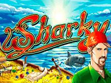 Sharky игровые аппараты