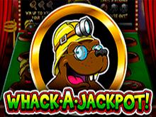 Онлайн-аппарат Whack A Jackpot со ставками реальных денег